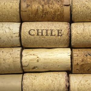 Wijnkurken uit Chili